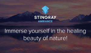 Stingray-Ambiance